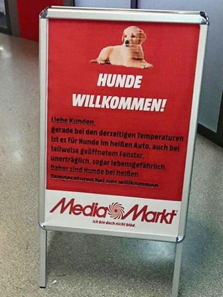 media-markt-hunde-erlaubt_448x597 (1)