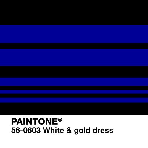 paintone-pantone-2