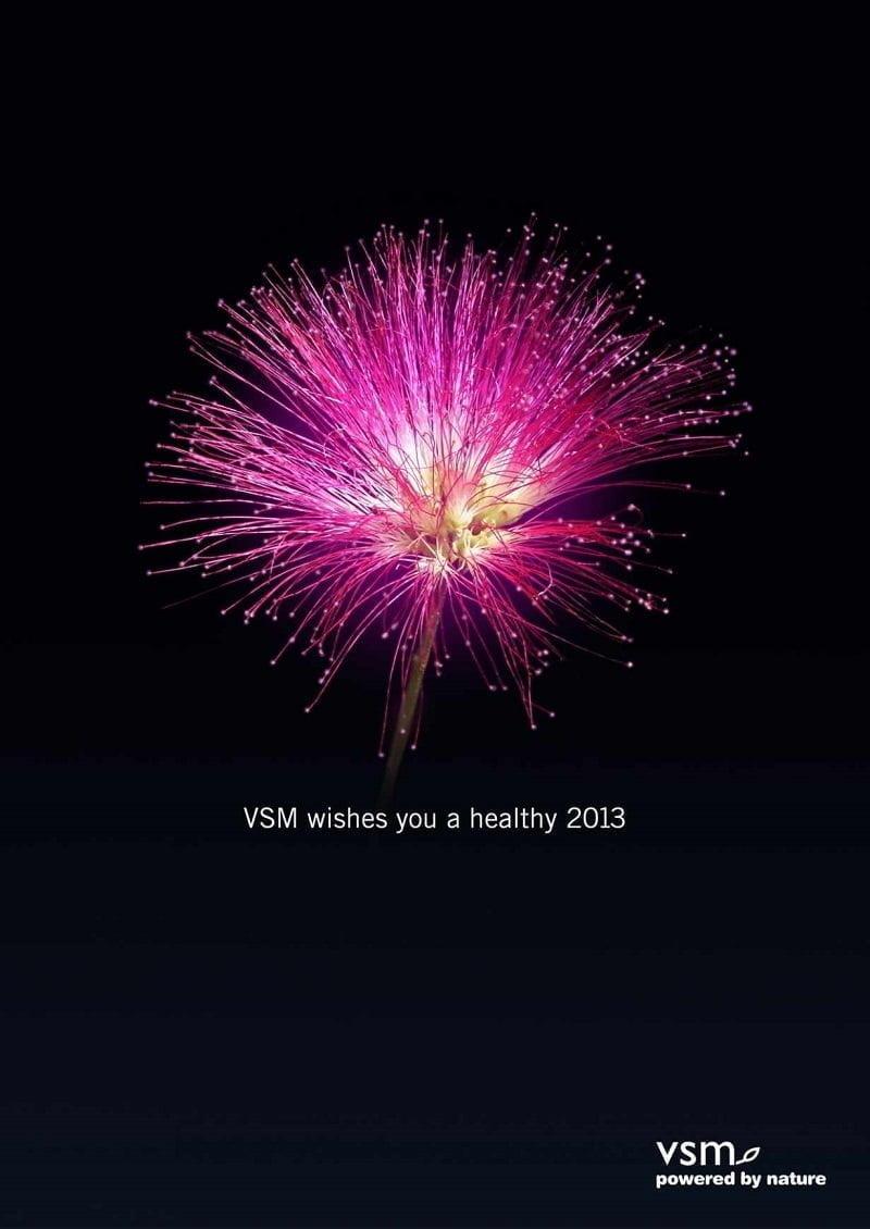 vsm-new-year-1