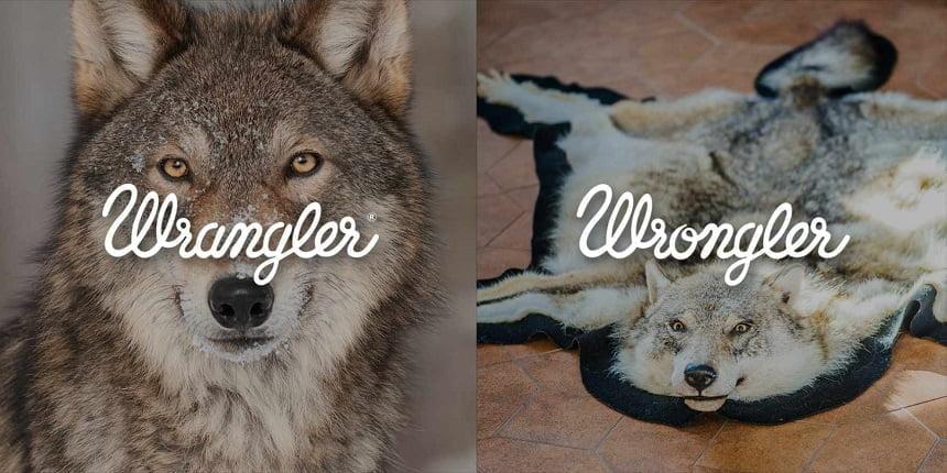 wrangler_wrongler_0006_8_aotw