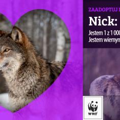 Walentynkowa kampania WWF Polska