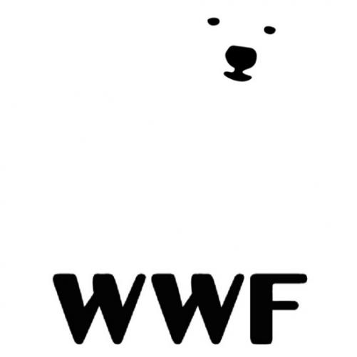 GRAY LONDON dla WWF