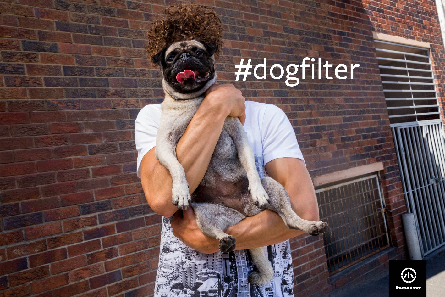 #DOGFILTER_2400