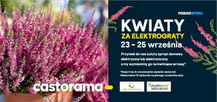 Kwiaty za elektrograty